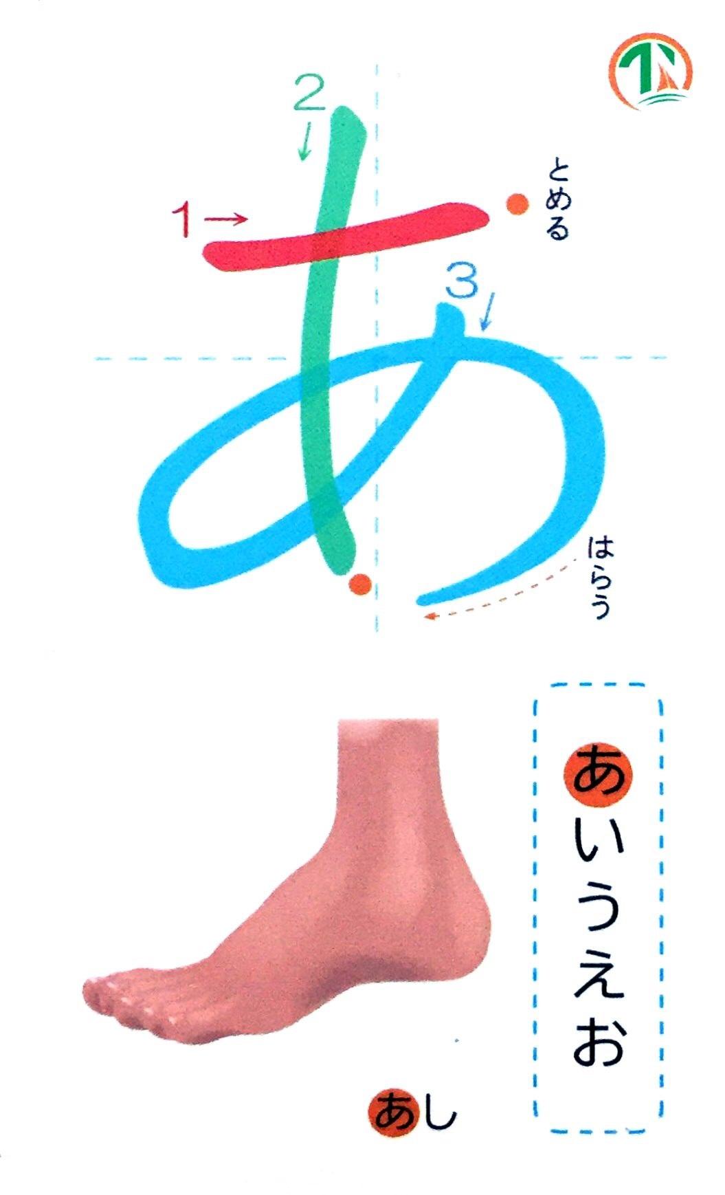Flashcards Thẻ Học Tiếng Nhật Hộp 2 Bộ Thẻ Hiragana & Katakana